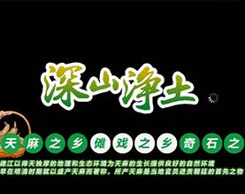 贵州德江县康奇药植开发有限责任公司