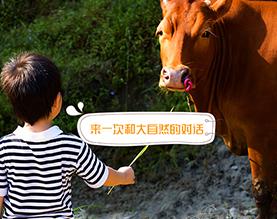 鲸蛰(长沙)农业发展有限公司