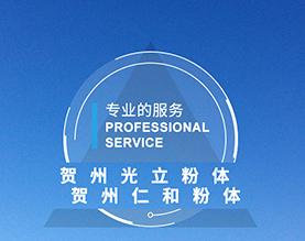 贺州市光立粉体有限公司