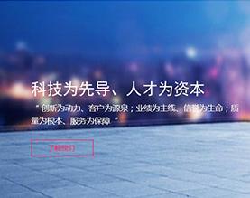 北京京安先锋科技有限公司