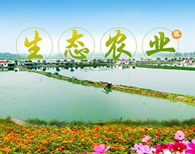湖北老农垦金水生态农业开发有限公司