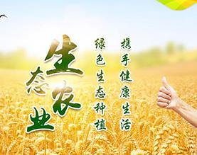 通榆县新洋丰现代农业服务有限公司