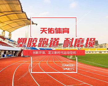 河北天佑體育設施有限公司