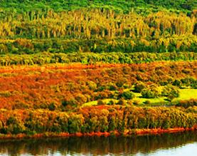 东方红生态旅游