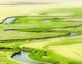 绥芬河市龙生经贸有限责任公司
